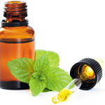 Add Peppermint oil to stimulate growth