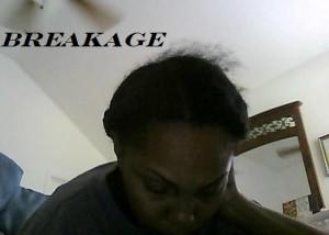 breakagevid2